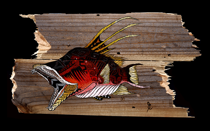 """Hogfish that Bonds""  11"" x 20""  Capturing a beautiful hogfish in action, as I spearfish in our S. FL waters."